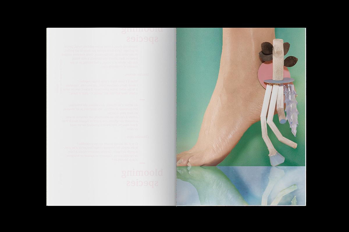 Graphisme Geneve graphic design graphique direction artistique layout mise en page édition  look-book pia farrugia swiss federal design awards 2015 prix design bijou contemporain contemporary jewelry landscape paysage