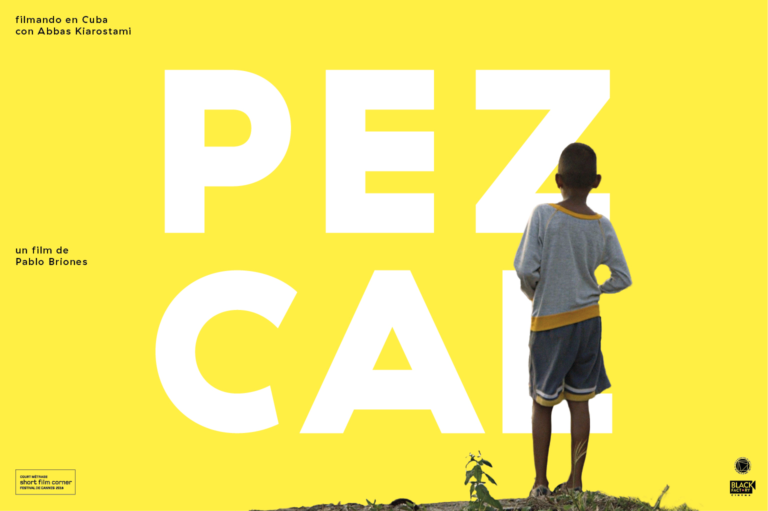 Graphisme Geneve graphic design graphique direction artistique affiche poster swissposter culture culturel promotion film pablo briones kiarostami cuba festival cannes locarno
